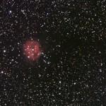 IC5146 - Kokonnebel